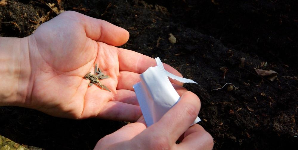 Спайс - синтетическое вещество, которое наносится на траву для курения