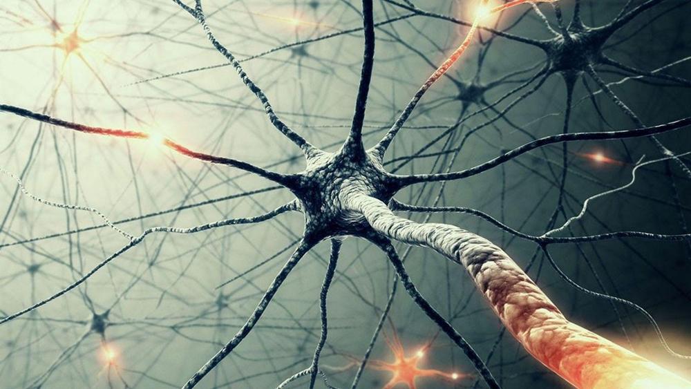 влияние наркотиков на мозг
